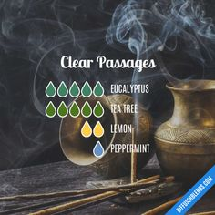 Clear Passages - Essential Oil Diffuser Blend