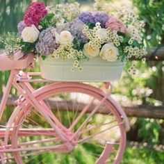 Sweetie bike