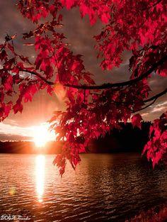 indah Panorama alam