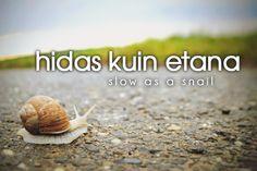 hidas kuin etana ~ slow as a snail
