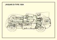 d-type - jaguar