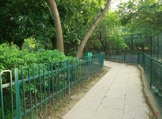 Step Out: Delhi's Nature Trail Stepping Out, Delhi Ncr, Places To Travel, Trail, Sidewalk, Hot, Nature, Naturaleza, Destinations