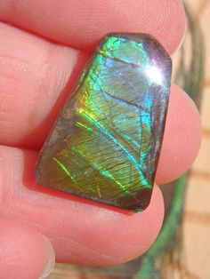 High Quality Alberta Ammolite Cabochon (Ideal for Wire Wrapping) Stones For Jewelry Making, Crystals For Sale, Looking Forward To Seeing You, Reasons To Smile, Ammonite, Wire Wrapping, Opal, Give It To Me, Rings For Men