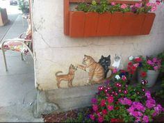 Cats painted on the wall -