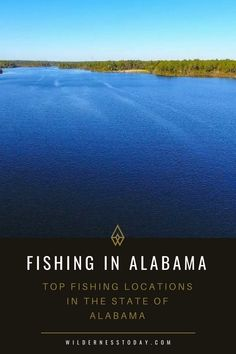 Best Fishing Locations in Alabama: Bass, Trout, Fly Fishing & More - Wilderness Today Pike Fishing, Best Fishing, Fishing Tips, Fly Fishing, Kayaking Near Me, Kayaking Tips, Alabama Outdoors, Drop Shot Rig, Survival Life Hacks