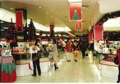 Old David Jones & John Martins photos? Rundle Mall, Adelaide South Australia, John Martin, David Jones, School Fun, Department Store, History, 1980s, Cities