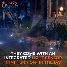 LED Solar Powered In-Ground Lights ? These LED Solar Powered In-Ground Lights are innovative and eye-catching! They're guaranteed to make quite an impact on your home's night time curb appeal and they