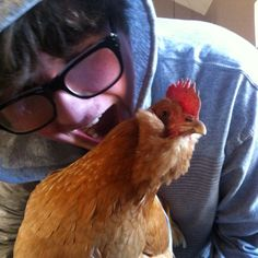 No chickens were harmed in the making of this photo.