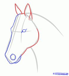 How To Draw A Horse Face Step By Step Draw A Race Horse Stepstep Drawing Sheets Added - Metarnews Sites Horse Face Drawing, Horse Face Paint, Horse Drawings, Animal Drawings, Step By Step Sketches, Step By Step Drawing, Horse Drawing Tutorial, Horse Sketch, Drawing Sheet