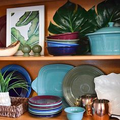 Celebrating #shelfiesunday with these pretty botanical themed shelves! Tag us in your own shelfies so we can feature your #FiestaWare #Regram via @fiestadinnerware