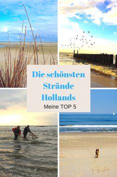 GERADE IM HERBST EIN ERLEBNIS - meine persönliche Top 5. Mit Strand-Yoga, blühenden Dünengärten, Massagen beim Meeresrauschen u.v.m.