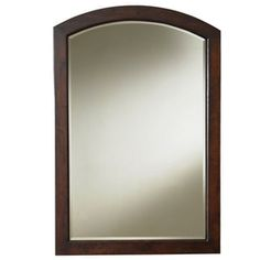allen + roth Moravia 22-in W x 30-in H Sable Bathroom Mirror