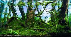 """""""Deep Green Forest"""" Wendy Kurniawan, Jakarta, Indonesia, 2013."""