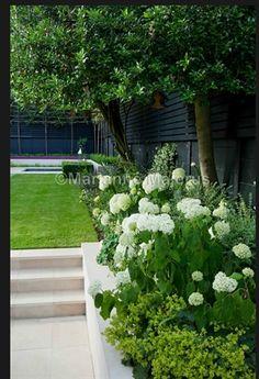 Black fencing, green and white garden design. Charlotte Rowe Garden Design… Source by gardeningwithtr Rustic Gardens, White Gardens, Small Gardens, Outdoor Gardens, Contemporary Garden Design, Small Garden Design, Modern Design, Vintage Garden Decor, Rustic Backyard