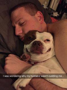 Friday Funny images (09:23:56 AM, Friday 11, November 2016 PST) – 80 pics