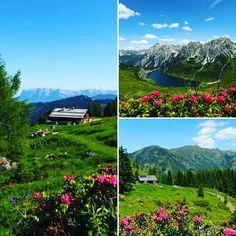 Appartements Stockinger: Almrausch und Edelweiss Sound Of Music, Wander, Edelweiss, Hiking, Adventure, Mountains, Holiday, Travel, Beautiful