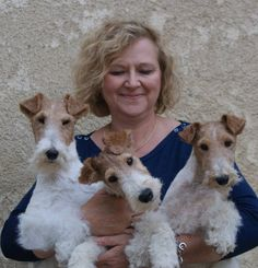 Woman holding three wire haired fox terriers. I could do that job !