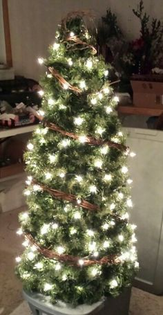 Tomato cage Christmas tree ~  Anyone want to post favorite Christmas decor ideas... - Page 6 - Blogs & Forums