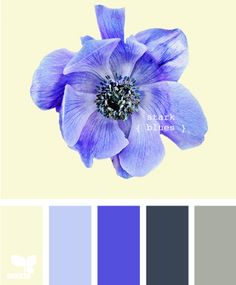 Blurb ebook: Design Seeds - pale yellow walls to brighten/enhance natural light, pewter Expedit wall unit from Ikea, pops of purple/periwinkle accents. Louis Armstrong, Pale Yellow Walls, Summer Wedding Colors, Summer Colours, Simple Colors, Blue Color Schemes, Design Seeds, Color Swatches, Color Pallets