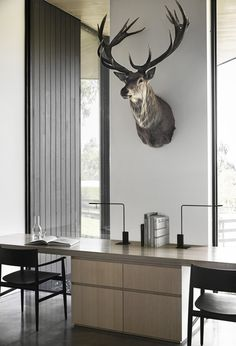 Image 19 of 23 from gallery of Red Hill Farm House / Carr + Jackson Clements Burrows Architects. Courtesy of Carr Australian Interior Design, Interior Design Awards, Home Interior Design, Wood Siding, Concrete Floors, Modern Farmhouse, Farm House, Architecture, Window