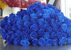 Bouquet of blue roses Flowers Nature, Pretty Flowers, Colorful Flowers, Flower Bomb, My Flower, Flowers For Girlfriend, Stylish Eve, Love Rose, Beautiful Roses