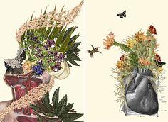 Anatomical Collages - y a mi que me gustan las flores, esta es totalmente otra forma de mirarlas.