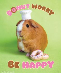 Donut worry be happy! - To celebrate the newest donuttiest poster in our Etsy shop for this weekend only we're giving away 20 teeny tiny donut stickers with every order! Use coupon code FREEDONUTS