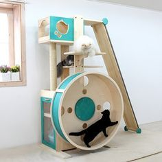 """A Cat gym for chubby paws and swinging bellies: Run, Kitty. Run! If your indoor cats are putting on a little extra weight, you could try getting them into this running wheel. It's highly unlikely 15-pound Tigger will take to it but some of his slimmer siblings might. Every little bit counts."""