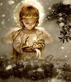 Merry Christmas Quote With Beautiful Angel christmas merry christmas christmas gifs christmas quotes christmas image quotes christmas quotes and sayings merry christmas gifs Beautiful Christmas Greetings, Merry Christmas Quotes, Merry Christmas And Happy New Year, Vintage Christmas Cards, Christmas Love, Christmas Wishes, Christmas Angels, Winter Christmas, Christmas Quotes And Sayings