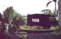 Detour - Pahoa