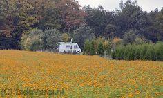 Herfst 2012.. De mooiste plekjes vindt je op IndeVerte: Pittoreske kwaliteits camper camping pleisterplaats met een exclusieve camping-look