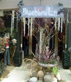 IDEAS & INSPIRATIONS: 13 Blackbird Lane - Outdoor Halloween Decorations