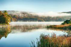 misty morning - Bana