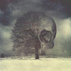 skull   Tumblr