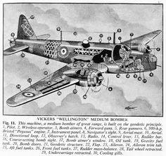 Cutaway from a book titled Britain's Wonderful Fighting Forces, published early in the war in 1940 Ww2 Aircraft, Military Aircraft, Wellington Bomber, Aircraft Design, Military Equipment, Royal Air Force, Cutaway, Wwii, Cool Pictures