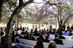 Ceremony in the Orchard. Farm Wedding, Wedding Ideas, Farm Images, Farms, Dolores Park, Events, Travel, Homesteads, Viajes