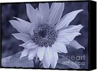 Cyan Sunflower Mixed Media by Chalet Roome-Rigdon - Cyan Sunflower Fine Art Prints and Posters for Sale