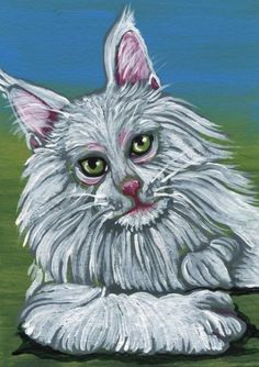 ACEO ATC White Maine Coon Cat Pet Art Original Painting-Carla Smale #Realism