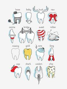 Dental Art, Dental Hygiene, Dental Health, Oral Health, Dental Humor, Medical Humor, Dental Assistant, Teeth Implants, Dental Implants
