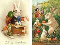vintage bunny postcard