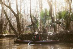 Photo+Credit:+Gately+Williams.+Paddling+down+the+Congaree.+