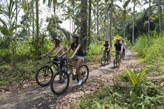 Get ready to embark on a journey off the beaten track, through some of Bali's most scenic highland locales. Start your ride near the renowned Mount Batur Volcano, overlooking Kintamani Lake, and cycle down through 30kms of forest trails, ancient Hindu temples, villages, rice fields, and plantations, sampling exotic fruits at their natural source.