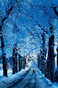 Blue Snow Road, Stockholm, Sweden ~ By Mrswilson