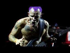 Top 10 Rock Bassists