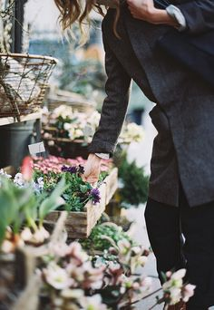 browsing for fresh flowers