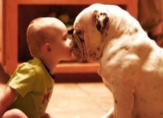 bully kisses.