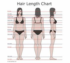 Hair length chart. I'm in between armpit length and bra strap length, maybe a little longer . . . going to waist length =)