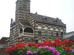 Flowers, Bruges 2011 (Belgium). Travel