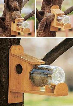 """Birds do it, bees do it, even squirrels do it! As leaves begin to fall and the days grow shorter, our furry friends are actively """"squirreling away"""" seeds and nuts in anticipation of a long, cold winter. These 8 brilliant backyard squirrel feeders are designed to assist our nut-storing neighbors while providing nature-lovers with a front row seat to urban wildlife in action."""