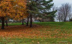 Fall by ahmadk1900